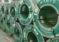 ประเทศจีน Hot Dip Galvanized Steel Coils , Carbon Steel Galvanized Hot Rolled Steel Coil For Container Plate ผู้จัดจำหน่าย
