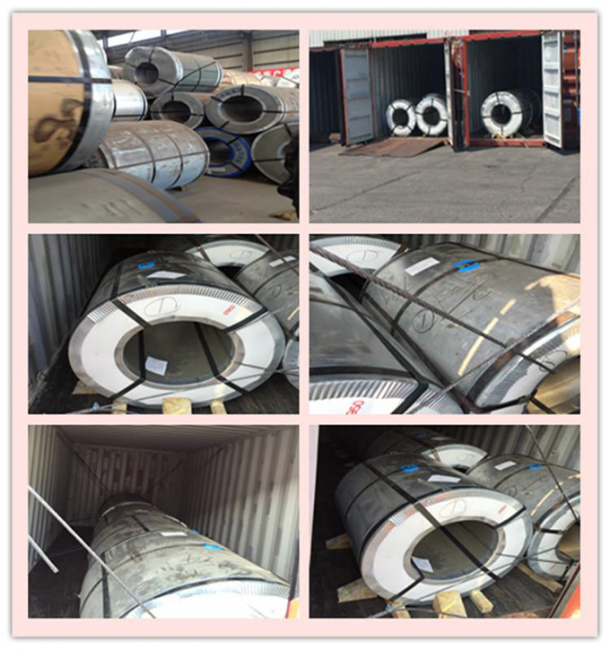 Hot Rolled And Cold Rolled Stainless Steel Coils 304 301 201 316L 409L 430